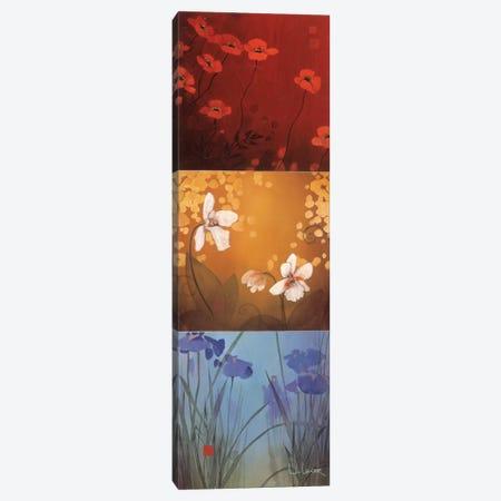 Aura Canvas Print #DLL5} by Don Li-Leger Canvas Art Print