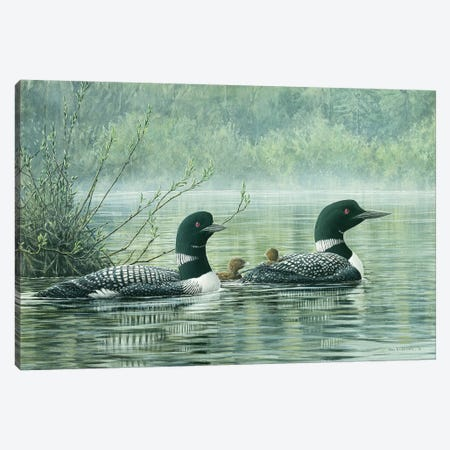 Northern Reflections - Loons Canvas Print #DLL63} by Don Li-Leger Canvas Art Print