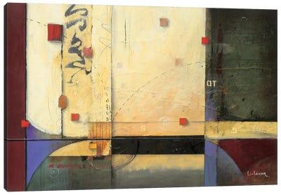 Ocean Voyage Canvas Print #DLL65