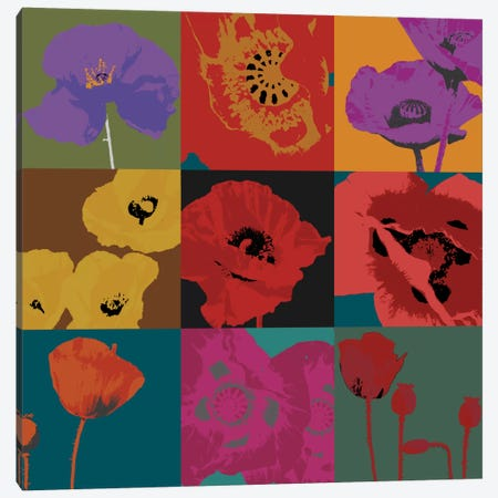 Pop Poppies Canvas Print #DLL85} by Don Li-Leger Canvas Wall Art