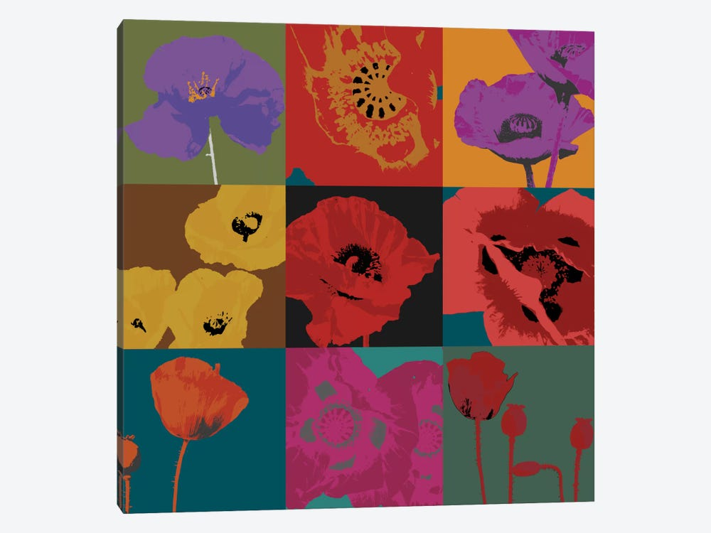 Pop Poppies by Don Li-Leger 1-piece Canvas Art Print