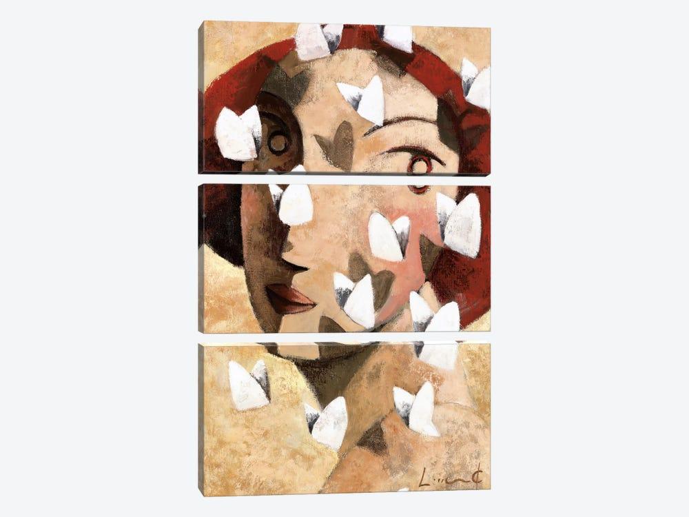 Sweet by Didier Lourenco 3-piece Canvas Art Print