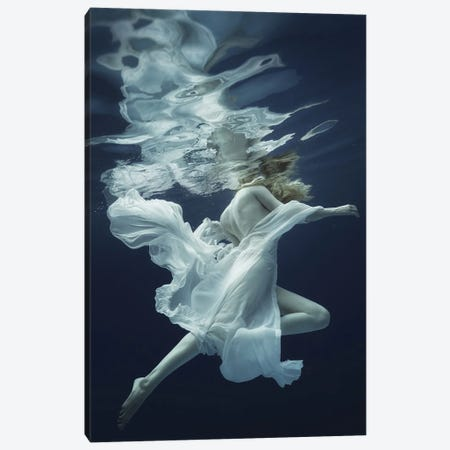 Water And Air Canvas Print #DLU2} by Dmitry Laudin Canvas Wall Art