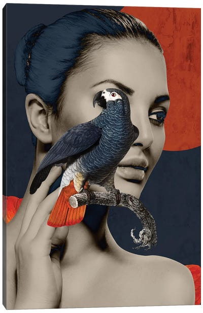 Woman Bird Diptych I Canvas Art Print