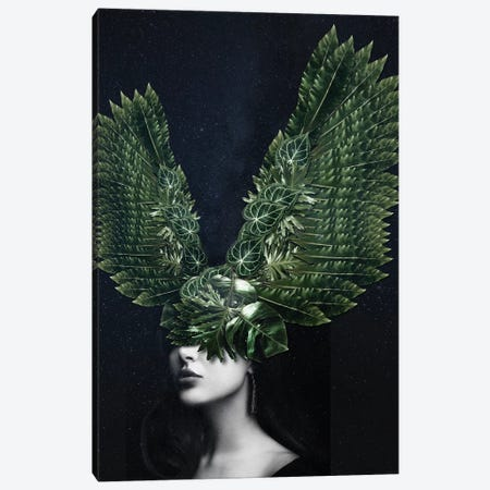 Woman Winged Nature Canvas Print #DLX164} by Danilo de Alexandria Canvas Wall Art