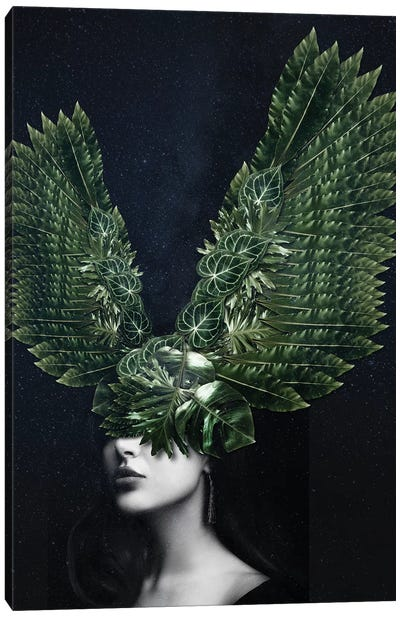 Woman Winged Nature Canvas Art Print