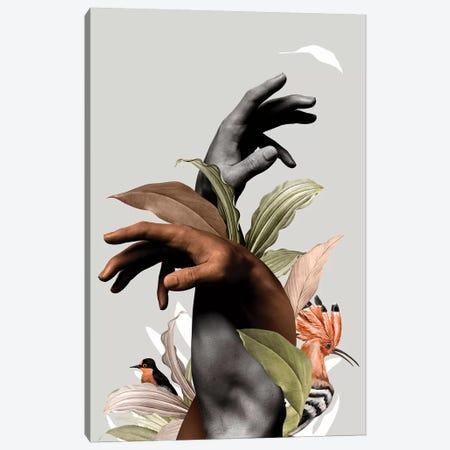 Hand With Flower Canvas Print #DLX172} by Danilo de Alexandria Canvas Wall Art