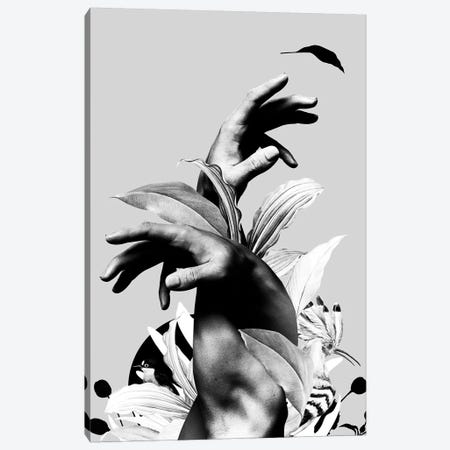 Hand With Flower In Black And White Canvas Print #DLX173} by Danilo de Alexandria Canvas Wall Art