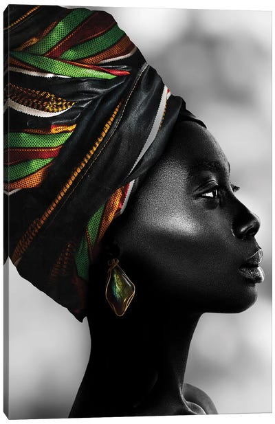 African Luxury Canvas Art Print