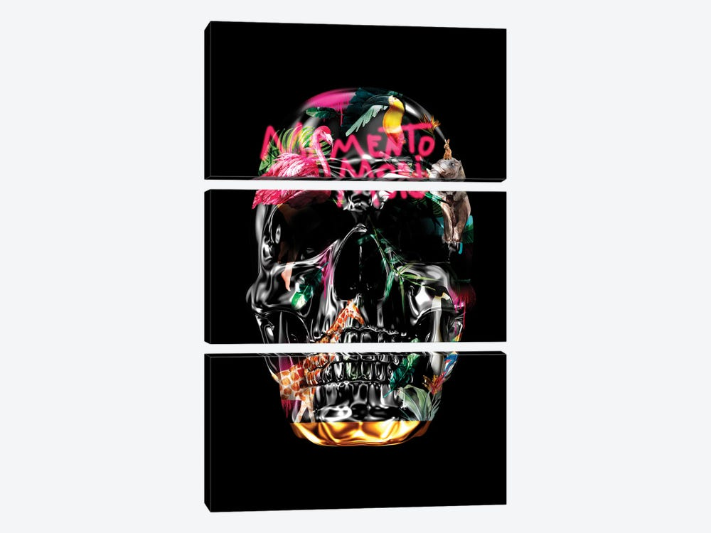 Memento Mori   Skulls Black by Danilo de Alexandria 3-piece Canvas Art Print