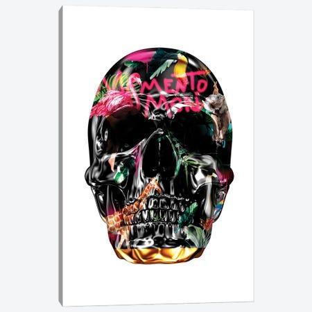 Memento Mori   Skulls White Canvas Print #DLX189} by Danilo de Alexandria Canvas Art Print