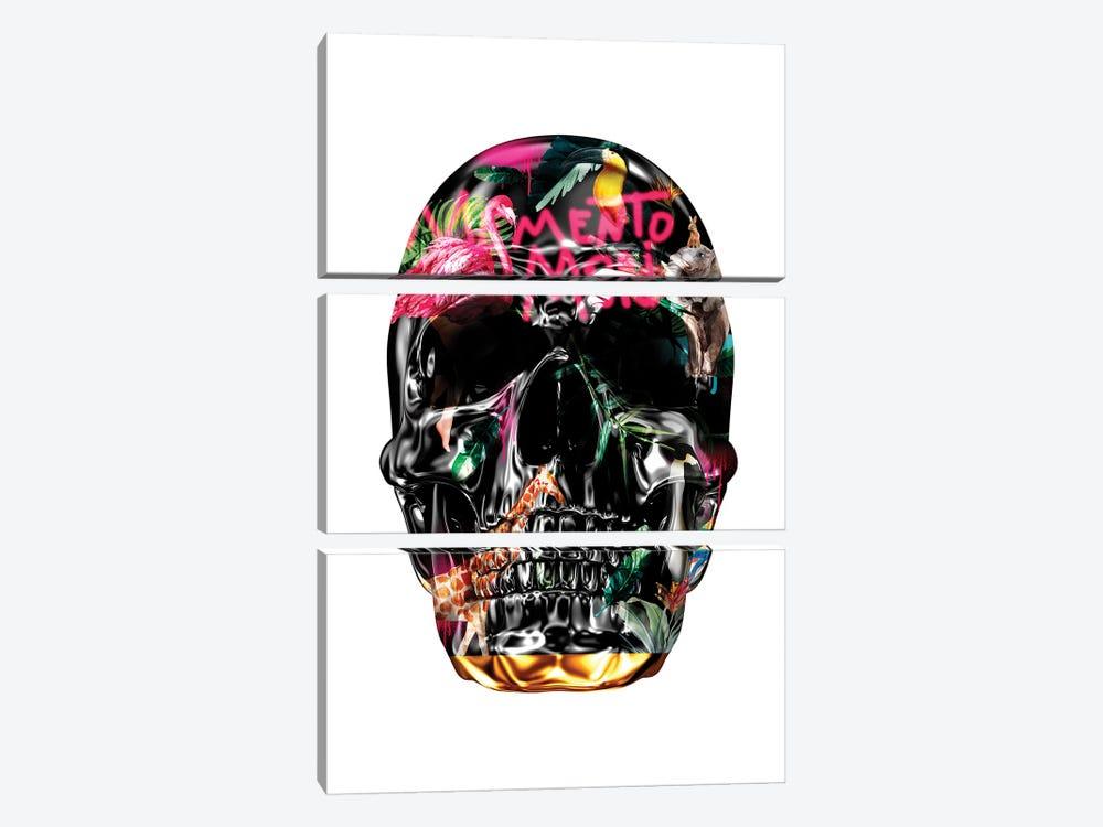 Memento Mori | Skulls White by Danilo de Alexandria 3-piece Canvas Artwork