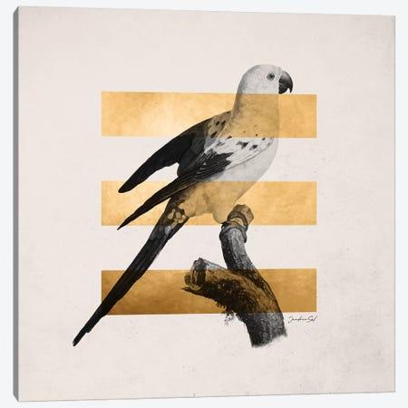 Golden Tropical II Canvas Print #DLX49} by Danilo de Alexandria Canvas Print