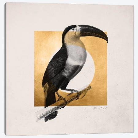 Golden Tropical III Canvas Print #DLX50} by Danilo de Alexandria Canvas Artwork