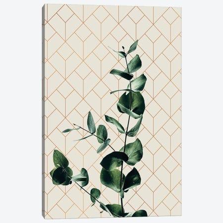Leaf Art IV Canvas Print #DLX62} by Danilo de Alexandria Canvas Print