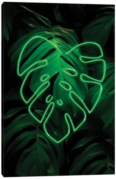 Leaf Art XI Canvas Art Print