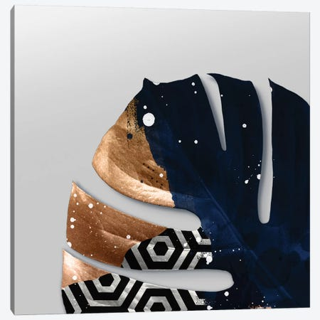 Leaf Art XIV Canvas Print #DLX73} by Danilo de Alexandria Canvas Wall Art