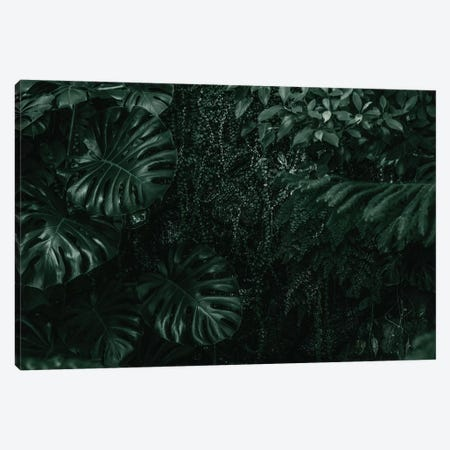 Leaf Green IV Canvas Print #DLX81} by Danilo de Alexandria Art Print