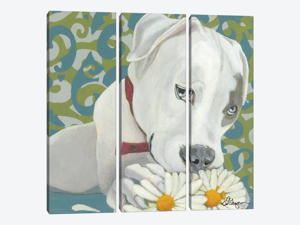 Patch by Dlynn Roll 3-piece Canvas Art