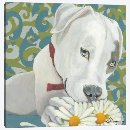 Patch Canvas Print #DLY10} by Dlynn Roll Canvas Art Print