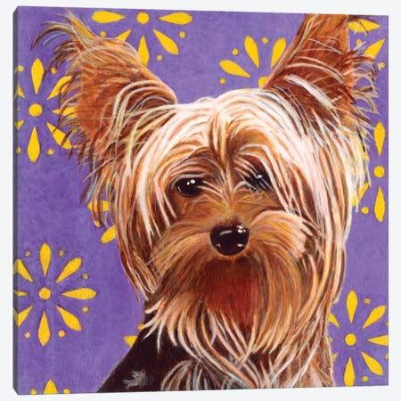 Ringo Canvas Print #DLY12} by Dlynn Roll Art Print