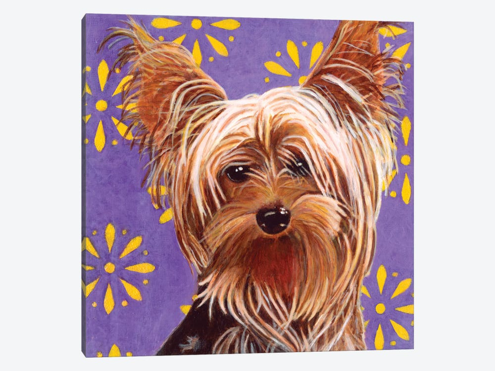 Ringo by Dlynn Roll 1-piece Canvas Artwork