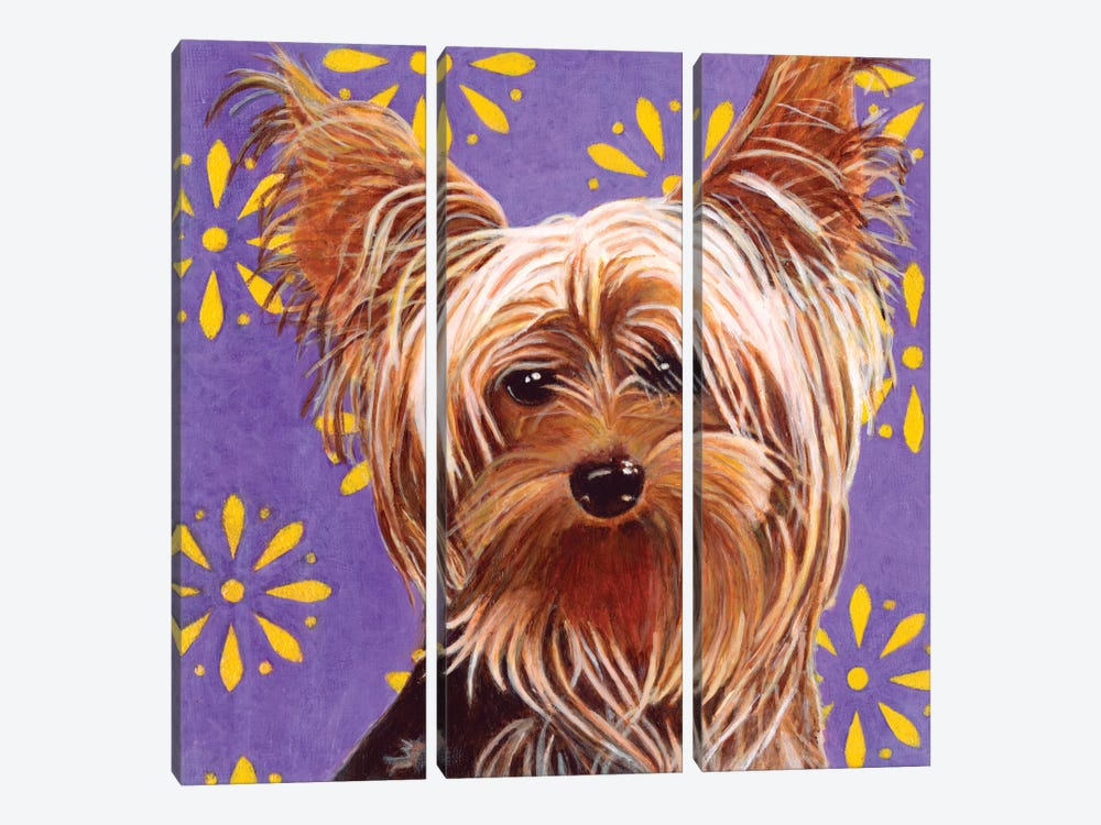 Ringo by Dlynn Roll 3-piece Canvas Artwork