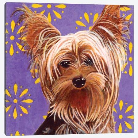 Ringo Canvas Print #DLY12} by Dlynn Roll Art Print