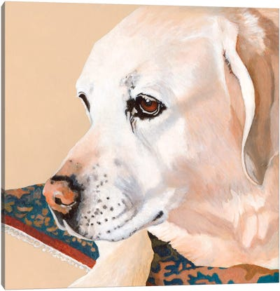 Dlynn's Dogs Series: Shell Canvas Print #DLY13