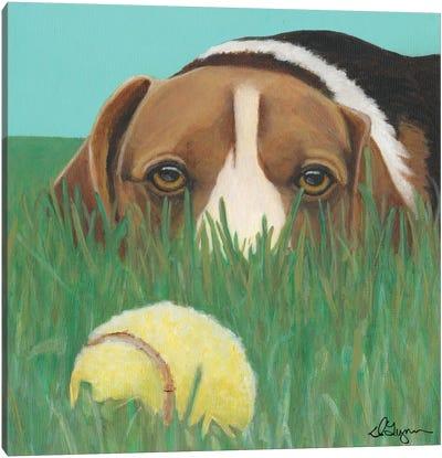 Sunny Canvas Art Print