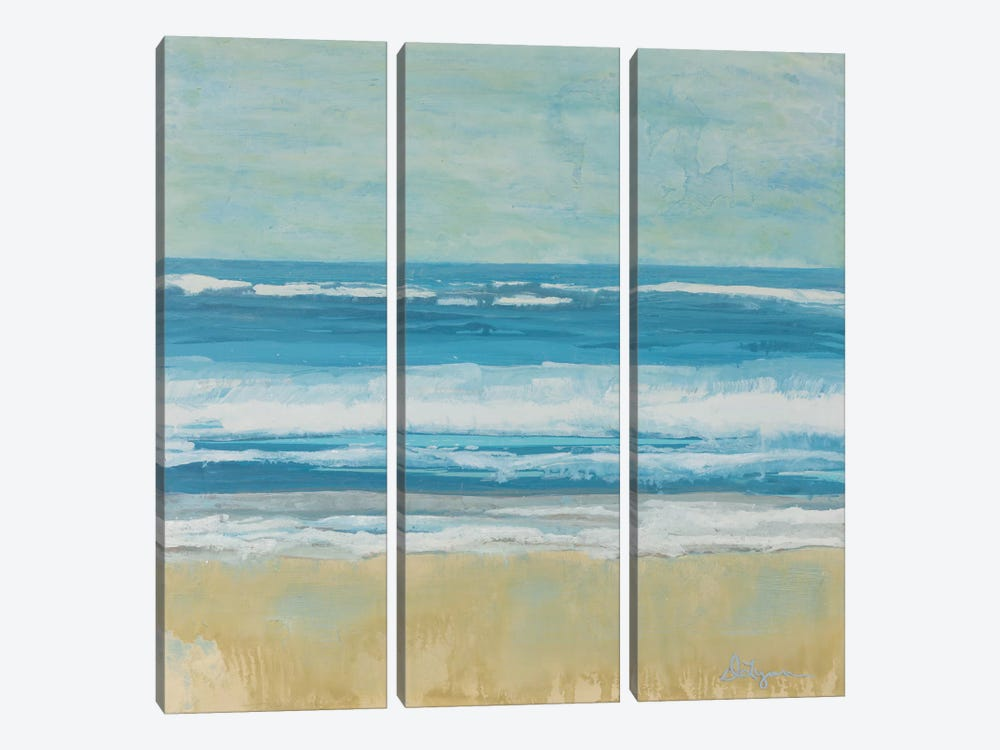 Puddle Beach by Dlynn Roll 3-piece Canvas Print