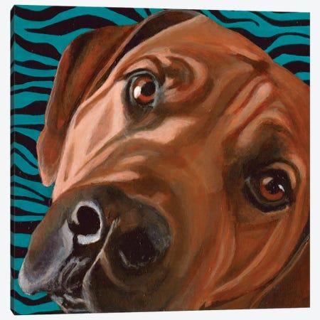 Bunsen Canvas Print #DLY2} by Dlynn Roll Canvas Art
