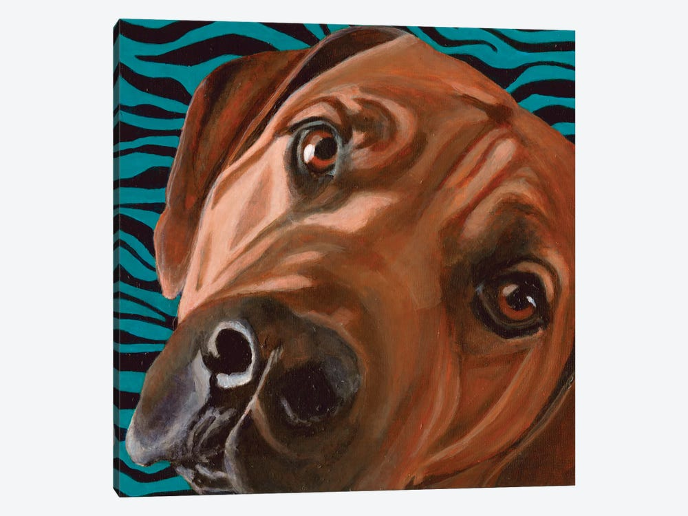 Bunsen by Dlynn Roll 1-piece Canvas Artwork