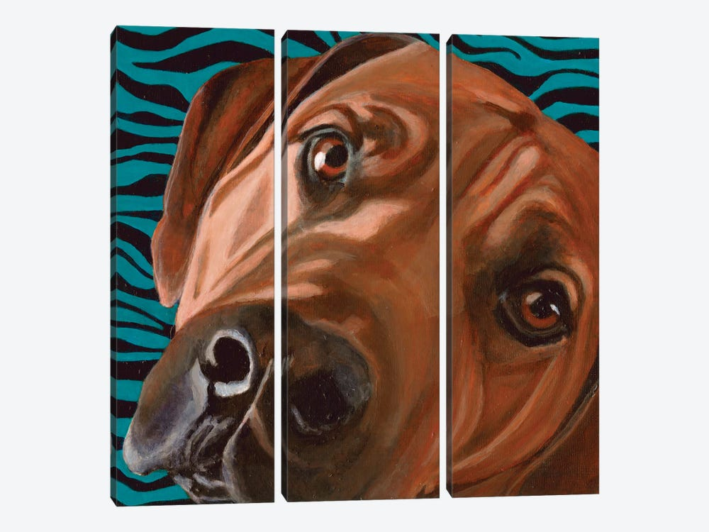 Bunsen by Dlynn Roll 3-piece Canvas Art