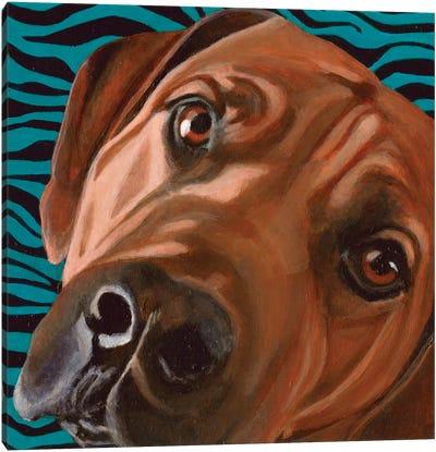 Bunsen Canvas Art Print
