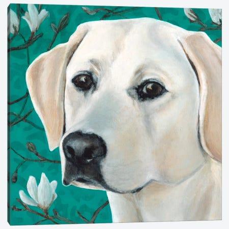 Magnolia Canvas Print #DLY8} by Dlynn Roll Canvas Artwork