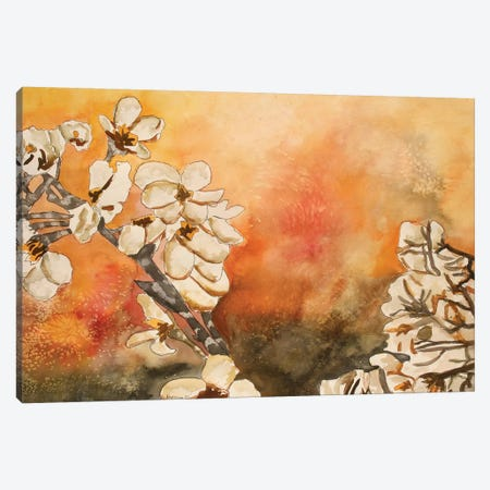 Cherry Blossom Canvas Print #DMC17} by Derek McCrea Canvas Art Print