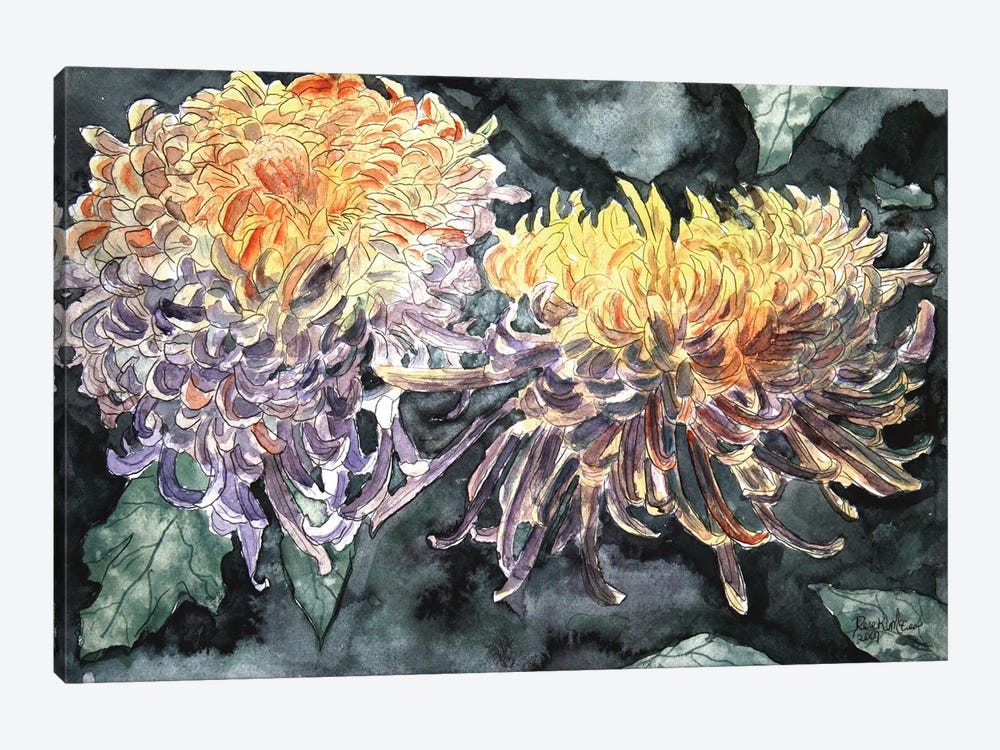 Chrysanthemum Flowers I by Derek McCrea 1-piece Canvas Artwork