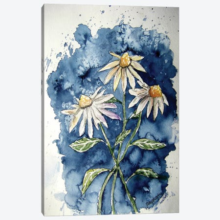 3 Daisies Canvas Print #DMC1} by Derek McCrea Canvas Wall Art
