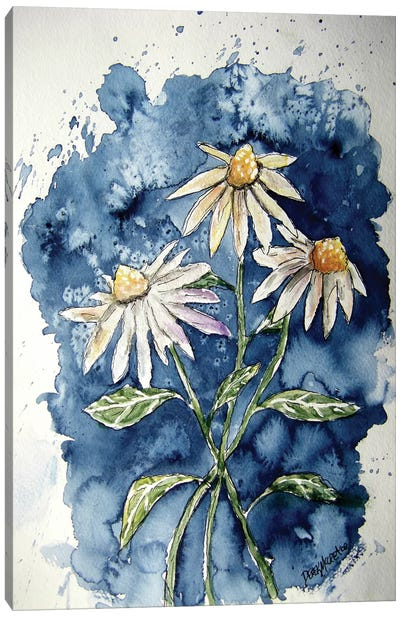 3 Daisies Canvas Art Print