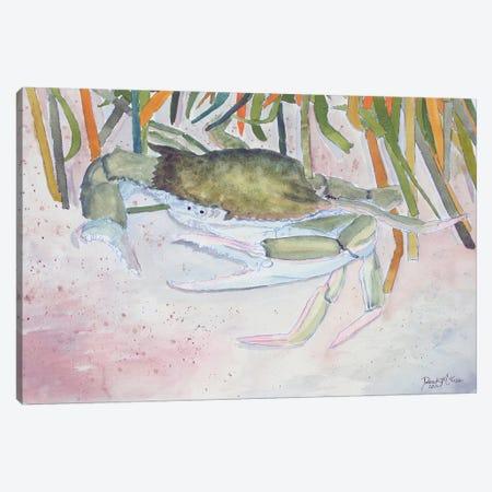 Crab II Canvas Print #DMC26} by Derek McCrea Canvas Wall Art