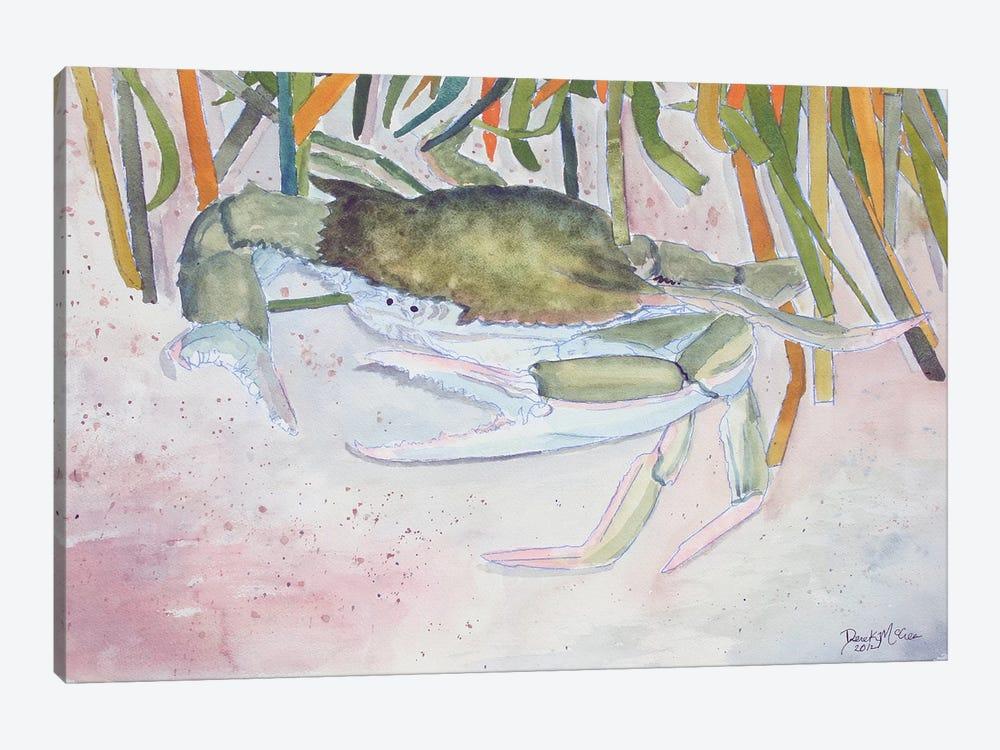 Crab II by Derek McCrea 1-piece Canvas Art