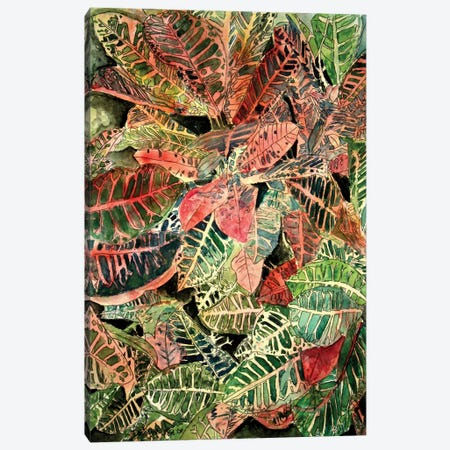 Croton Botanical Canvas Print #DMC27} by Derek McCrea Canvas Wall Art