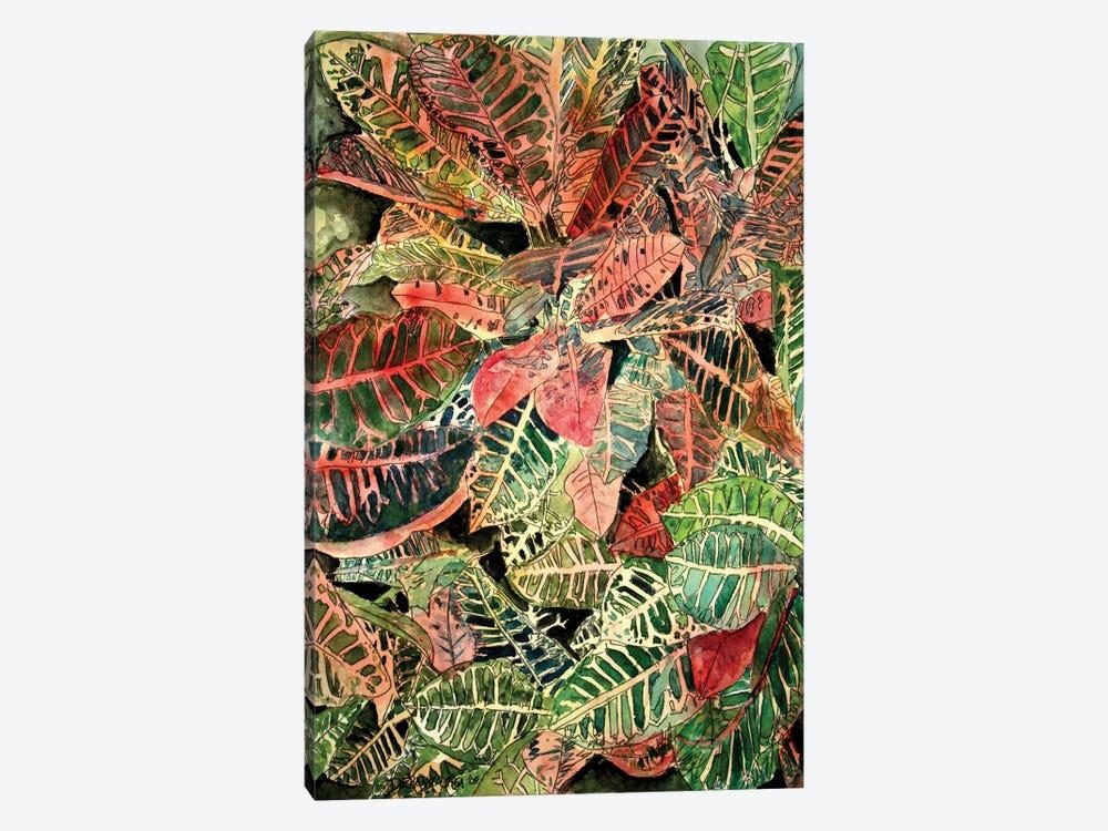 Croton Botanical by Derek McCrea 1-piece Canvas Print