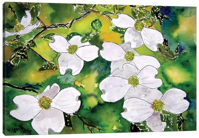 Dogwood Tree Flowers Canvas Art Print