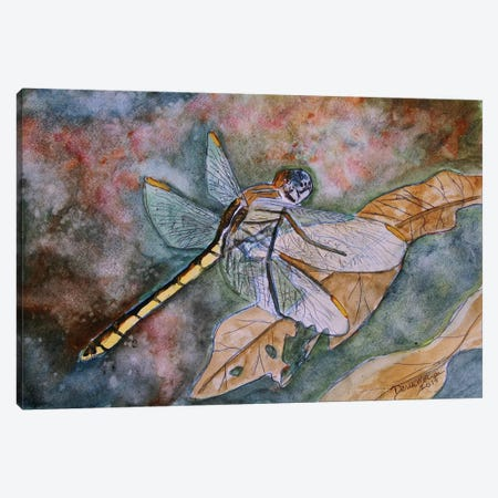 Dragonfly I Canvas Print #DMC31} by Derek McCrea Canvas Art