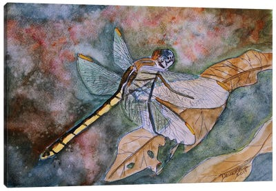 Dragonfly I Canvas Art Print