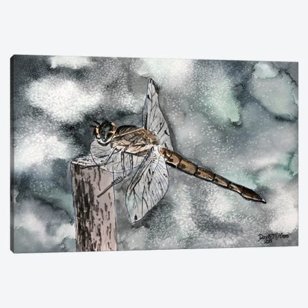 Dragonfly II Canvas Print #DMC32} by Derek McCrea Canvas Wall Art