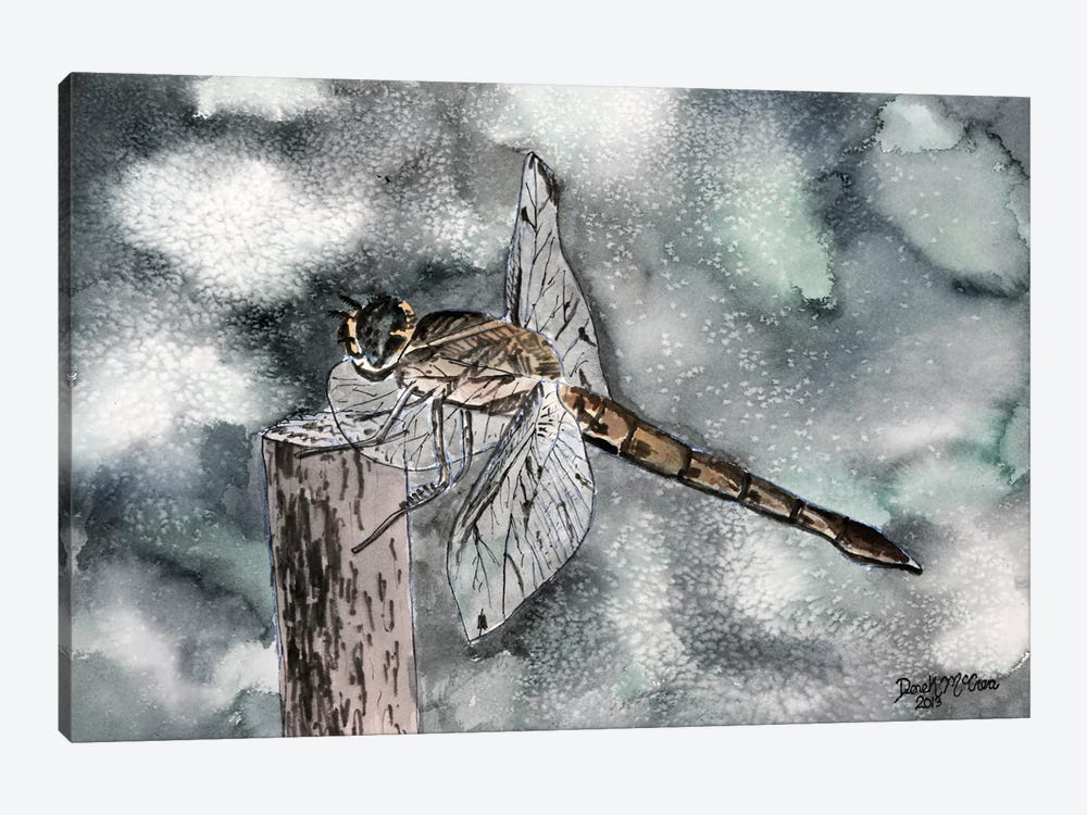Dragonfly II by Derek McCrea 1-piece Canvas Print