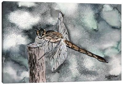 Dragonfly II Canvas Art Print